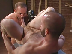 Bear gay spreads legs and sucked by mature gay