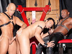 Cock-craving slut AJ is shaved & dominated by Jordano & Marc