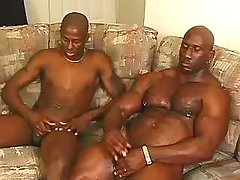 Tight black ass gets plugged rough