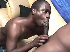Black gay lovers in dirty anal fest