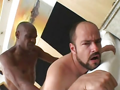 Bear gay fucked by gangsta guy in bed
