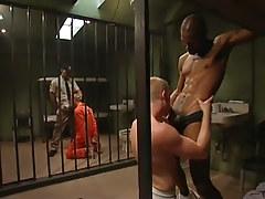 Two prisoners suck huge black cocks