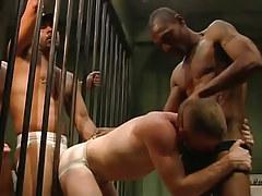 Two black guards share poor prisoner
