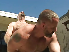 Old bear gay hard fucks tight males hole