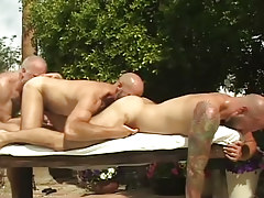 Three mature bears lick each other by pool