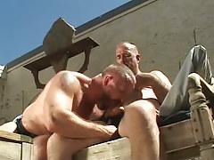 Hairy gay sucks cock of old stud