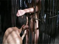 Gay boy sucks poor lad in cage