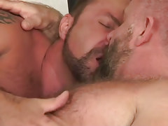 Two bear daddies kiss in bed