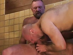 Bear dilf swallows hard dick of mature gay