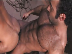 Bear Arabian gay fucks guy in doggy style