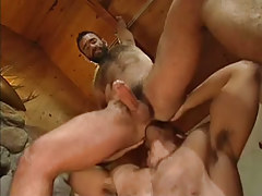 Bear gay licks tight asshole in house hunting