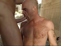 Bear gay deep throats cock under bridge