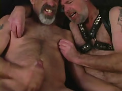 Mature bear gays jizz by turns